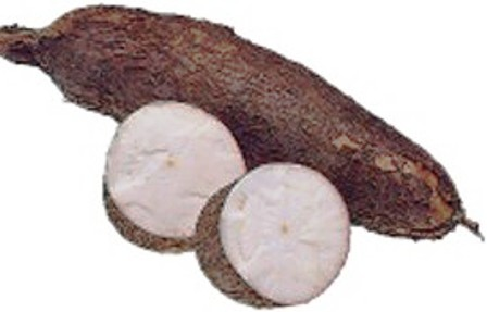 Image result for cassava yuca