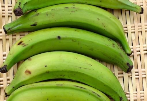 Plátano Verde (Green Plantain)