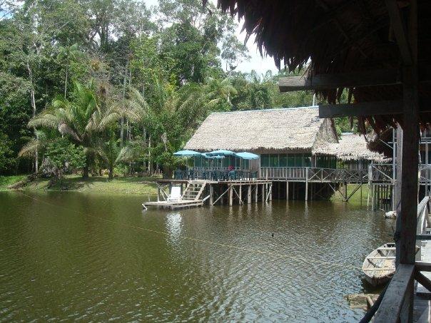 Amazonas12