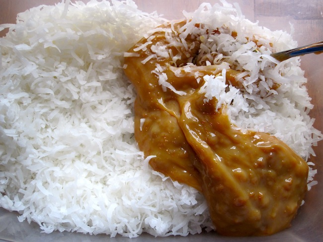 Shredded Coconut and arequipe