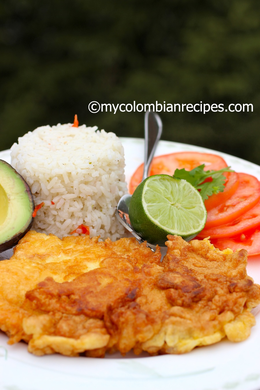 10 Seafood Recipes For Lent My Colombian Recipes