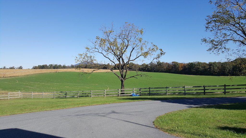 River hill farms